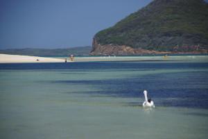 Port Stephens and Region