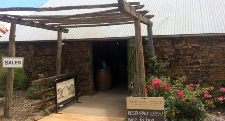From Vine to Wine to Dine at Spring Vale wines